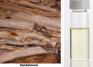 Fig. 11. Sandalwood and oil