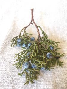 1-juniper-berries-oregon-copy
