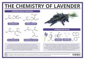 Lavender Chemistry