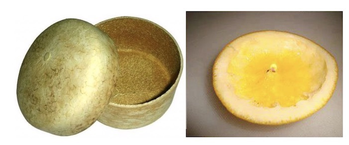 A box made from orange peel turned inside out and a candle made from Orange peel with Olive oil.